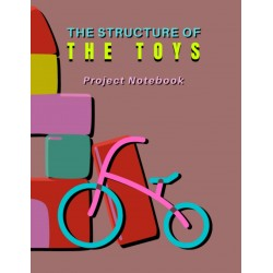 The Structure of The Toys - Project Notebook