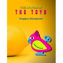 The System of The Toys - Project Notebook